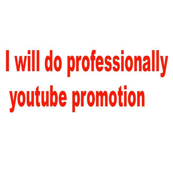 I will do professionally youtube promotion