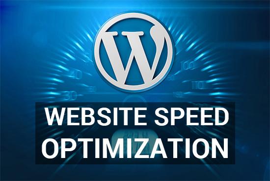 I will control website speed optimization
