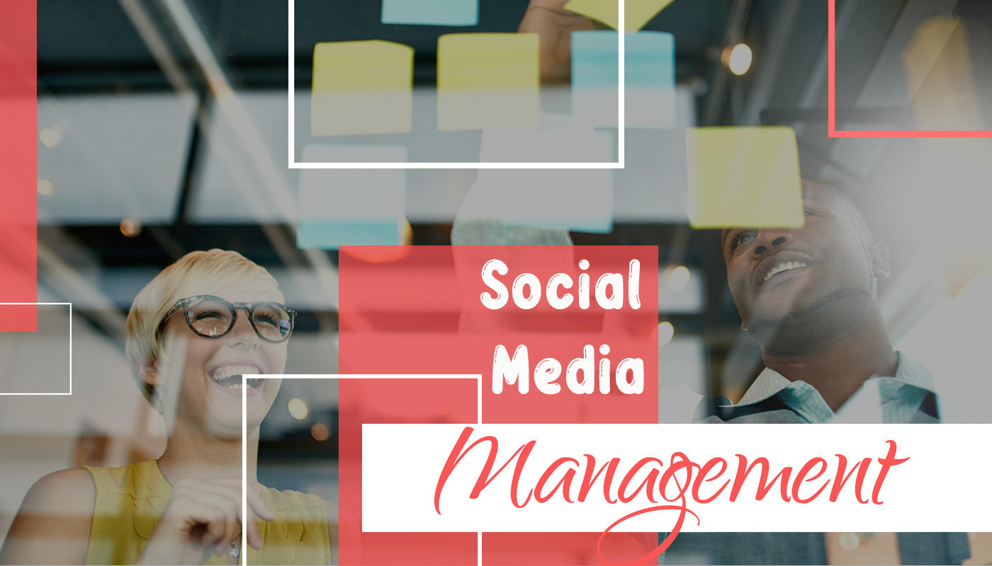 I will be your social media manager for facebook and instagram