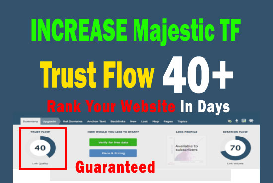 increase majestic trust flow tf 30 plus in 7 days guaranteed