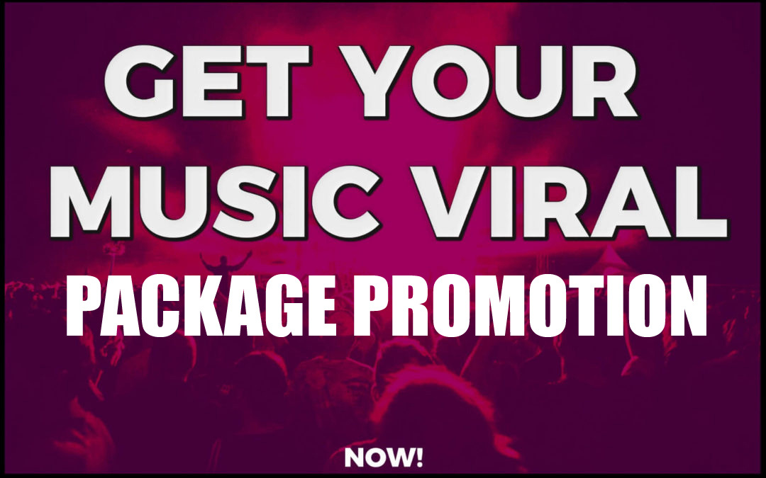 Targeted PACKAGE or BUNDLE music campaign to boost audience through SEO