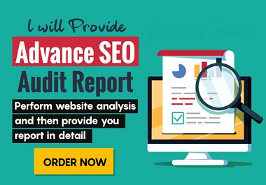 I will Do create Detail Seo Audit report in 2hr