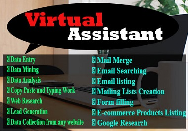 I will be your perfect personal Virtual Assistant for data entry,  lead generation,  web research