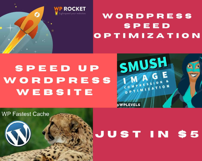 I will do wordpress website optimization and speed up in 24 hours