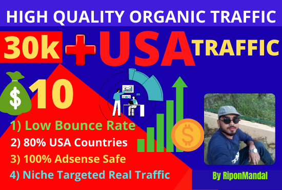 I will drive 30,000 + Real Adsense safe USA ORGANIC visitors to your website