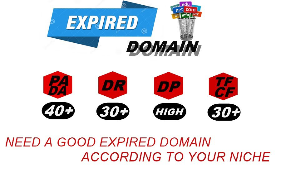 I will Provide Niche Relevants Qualitative Expired Domain