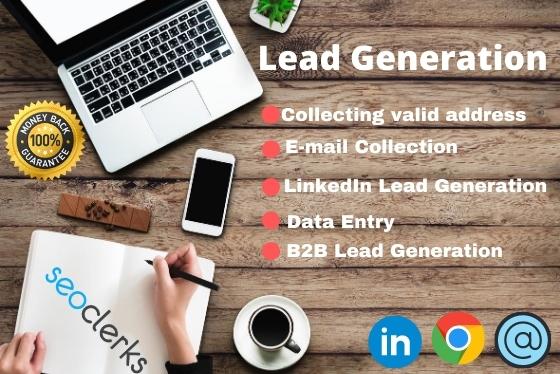I will provide LinkedIn lead generation,  data mining and B2B leads