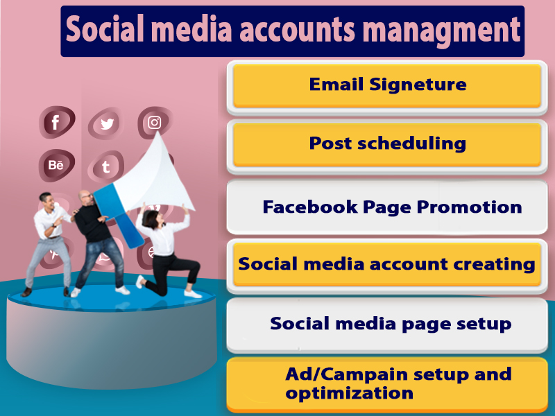 I'm a professional social media marketer so i can easily handle your accounts