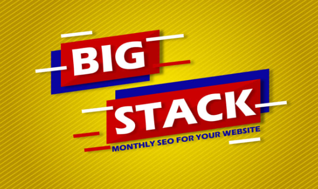 Big Stack Monthly SEO for Increase Your Website Ranking On Search Engine