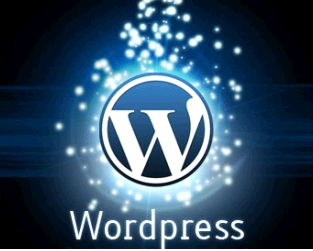 I will design your word press,  shopify, wix website and e-commerce store