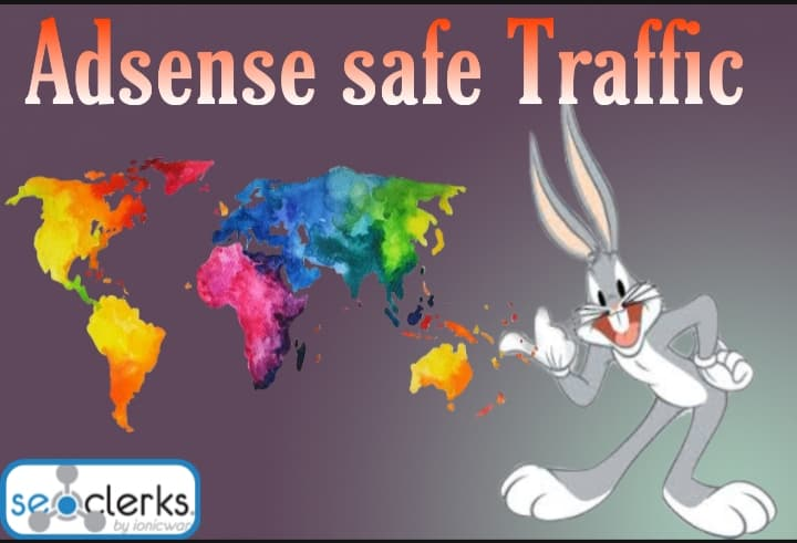 I will Drive targeted Adsense Safe Real Web traffic,  daily visitors for One Month
