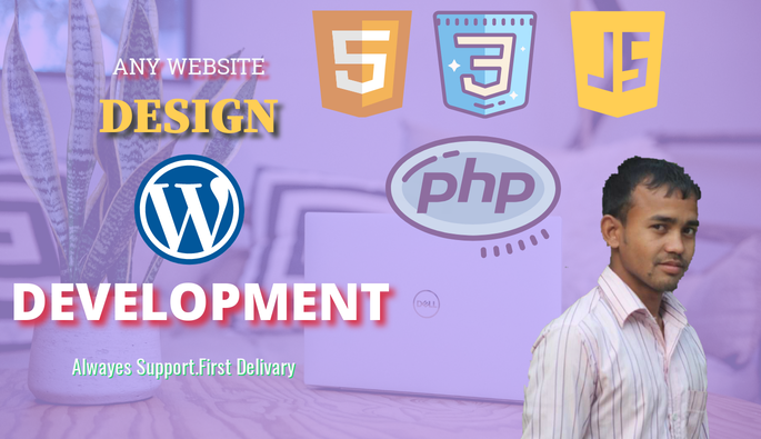 I will do professional website design and wordpress web development