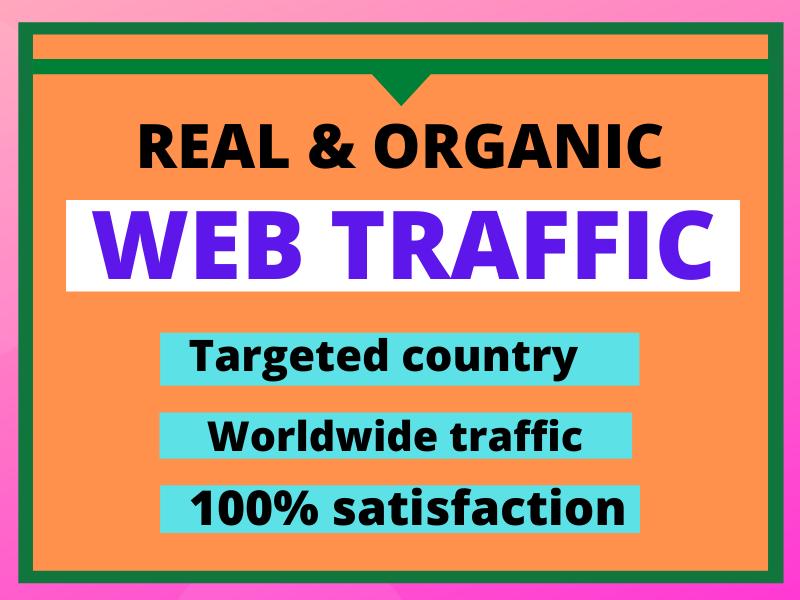 I will drive you real & organic web traffic