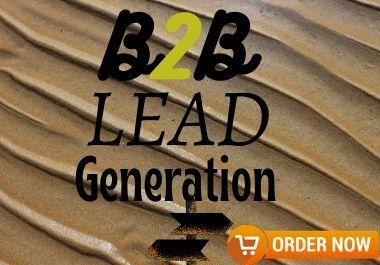 I will provide 100 Niche Based B2B Lead Generation.