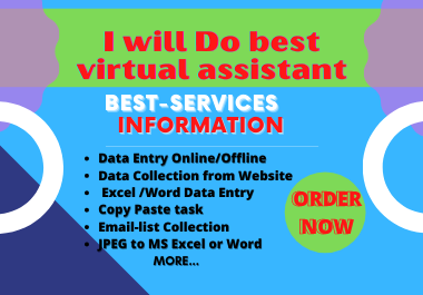 I will do professional best virtual assistant,  Data Entry,  Copy Past,  Email Collection,  Data Scrapin