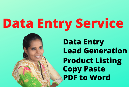 I will provide expert data entry in 24 hours