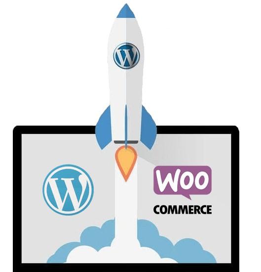 Speed up wordpress website within 24 hours