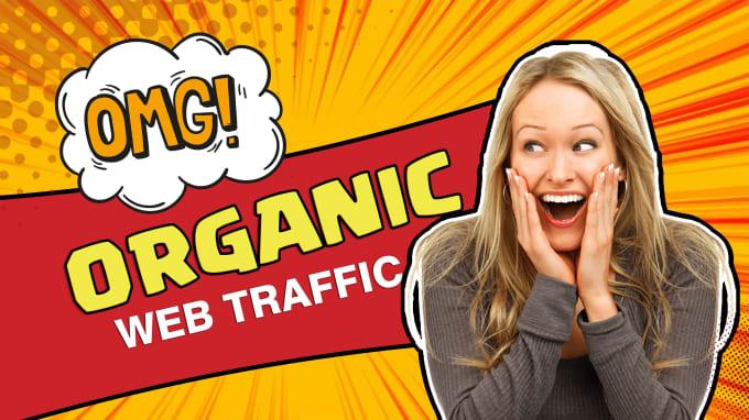 I will drive organic web traffic service