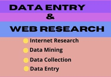 I will do data entry and web research professionally
