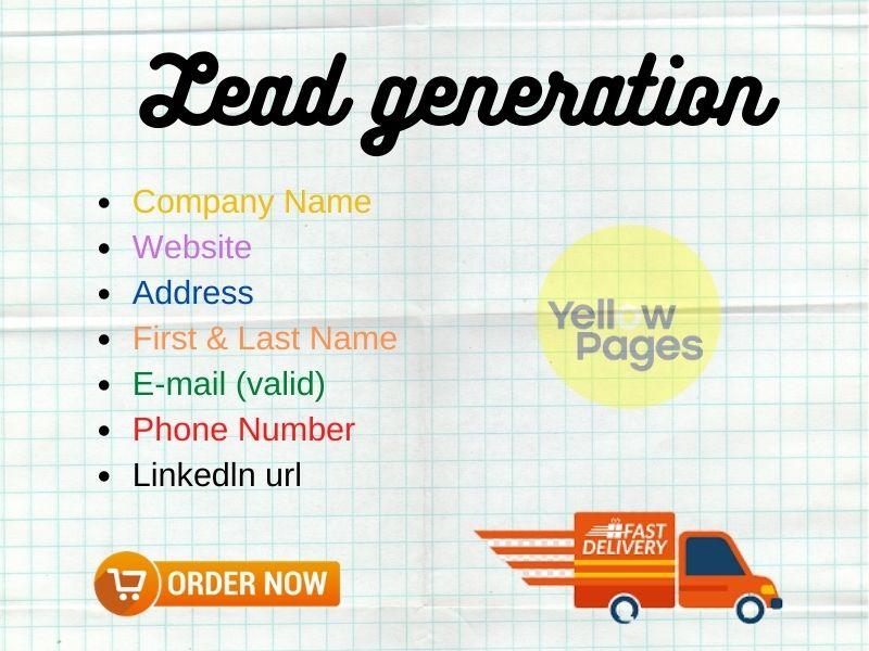 i will b2b 100 lead generation
