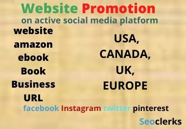 Website promotion on social media platform