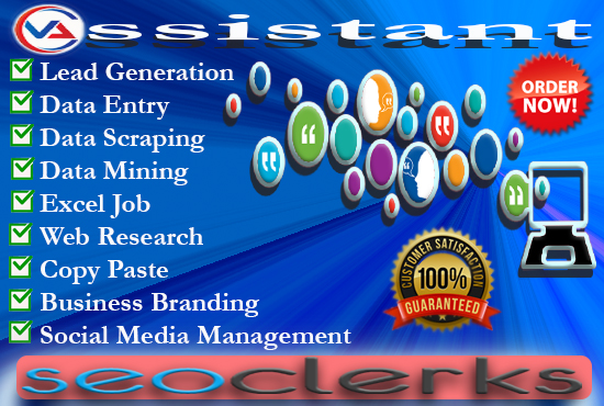 I will be your Perfect Professional Virtual Assistant