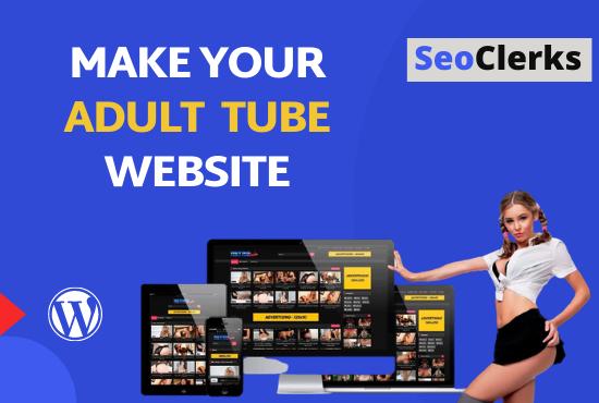 I will build professional adult tube wordpress website