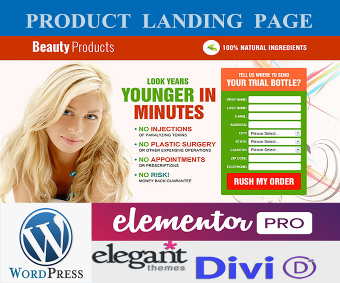 I will design WordPress landing page and website with elementor pro and divi builder