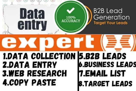 I will do data entry,  web research copy paste excel data entry and leads generations
