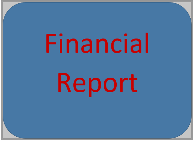 I will offer financial analysis,  project report,  company analysis