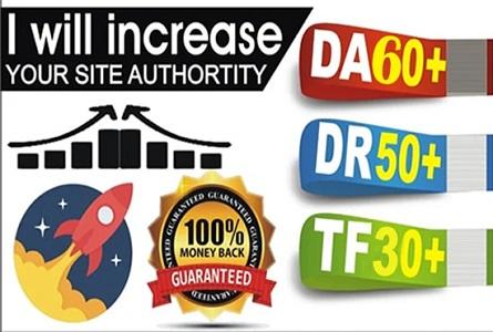 Increase da30+ DR50 and tf30+ domain site backlink