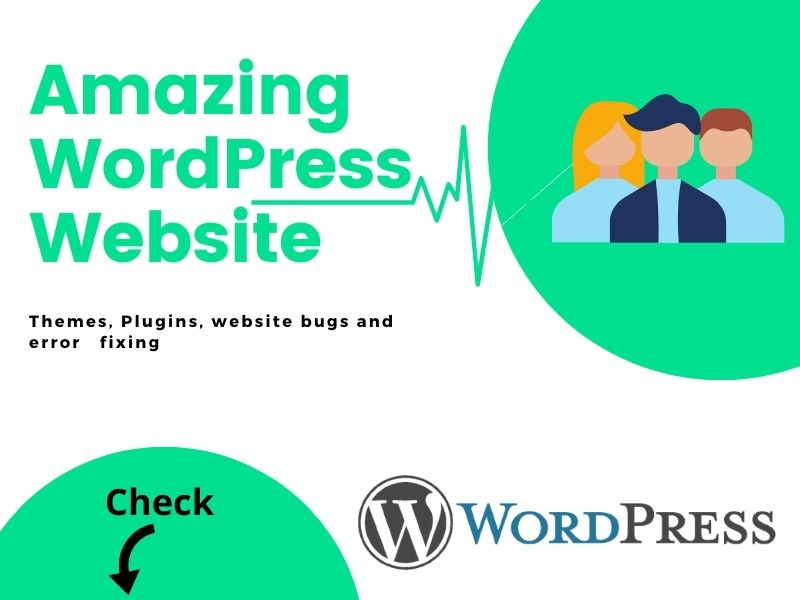 I will make any types of a professional website using WordPress