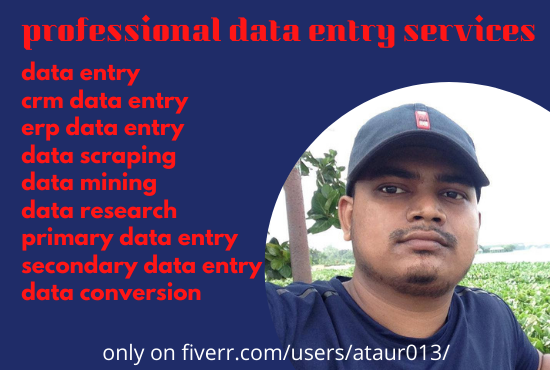 I will do data entry, copy paste, data conversion