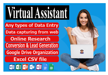I will your virtual assistant for data entry and web search