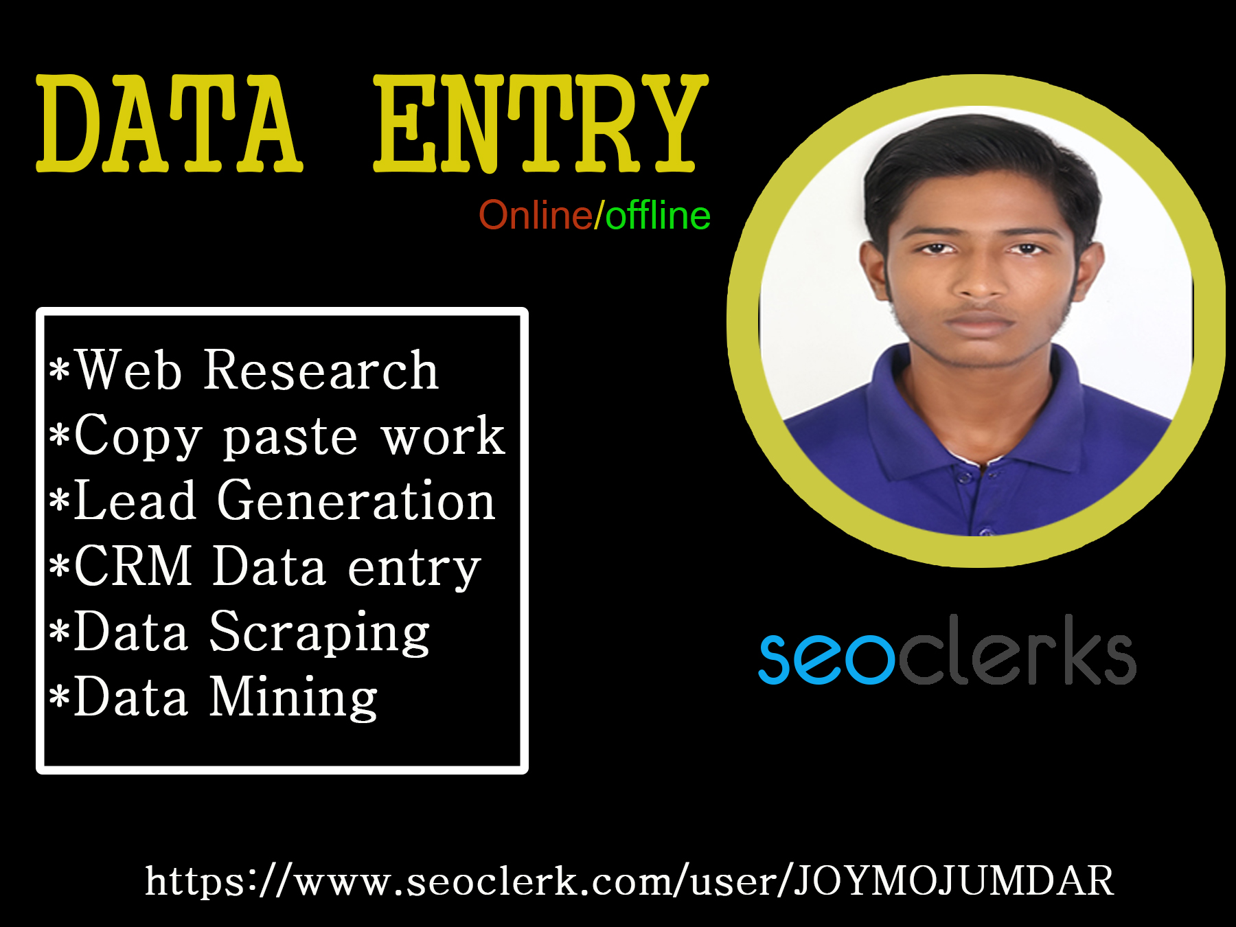 Do data entry, internet research and data analysis