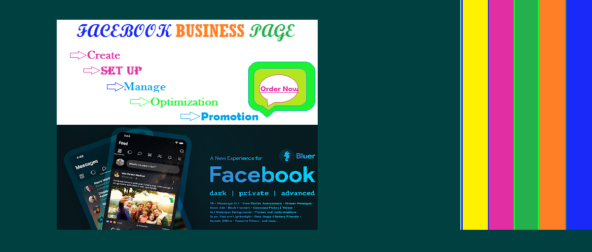 I will Create,  Setup and Manage your Facebook business page or manage ad campaign or many more optim