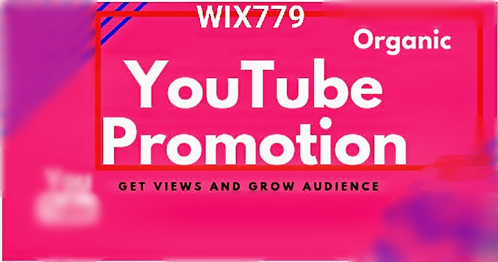 YOUTUBE video,  Fast And Safe Guaranteed Promotion by Wix779