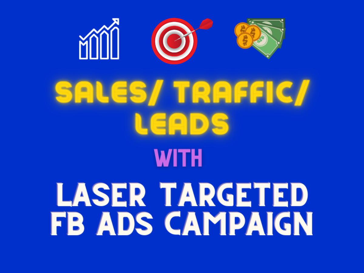 Take Your Business to the Next Level with Laser Targeted Facebook Ads Campaign