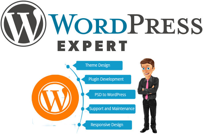 I will develop mobile responsive wordpress website
