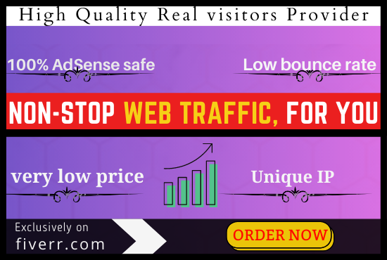 4,000 Hight quality real visitors Adsense safe and organic web traffic