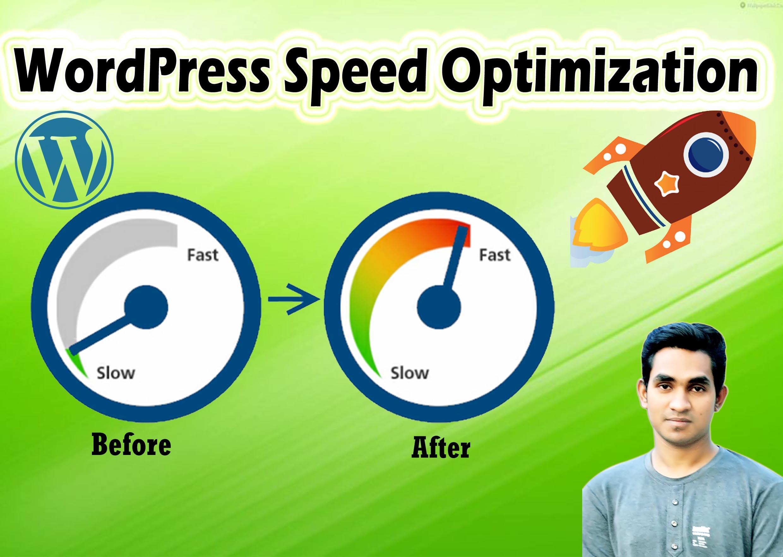 I will do wordpress speed optimization with gtmetrix in 24 hrs