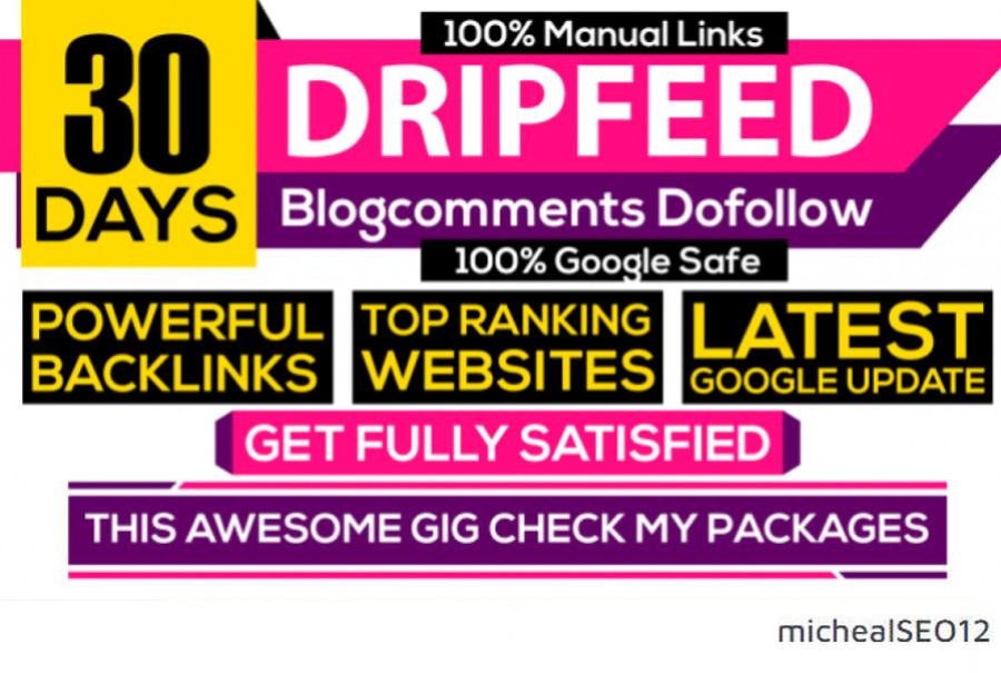I Will DO 30 Days SEO Backlinks Package High Quality Links 100