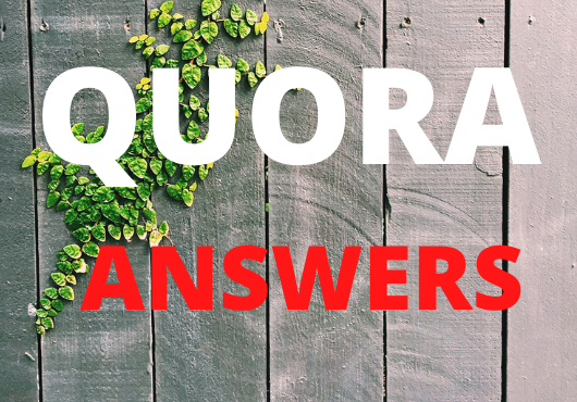 I will provide niche related 10 HQ Quora answers with Guaranteed Targeted traffic