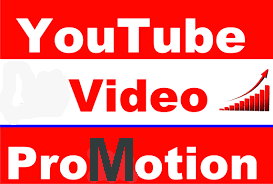 youtube video promotion instant start service