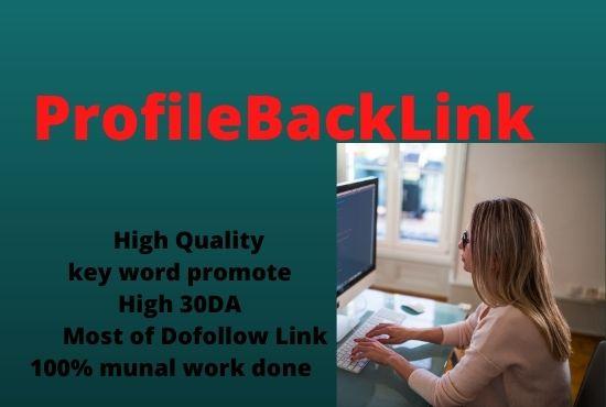 30 high quality profile backlinks service.