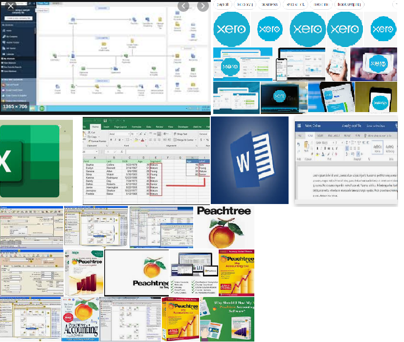Accounts and Data Entry in QuickBooks Ms Excel and Word.