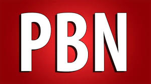 I will provide 25 pbn+10 dofollow backlinks with high authority for website ranking for you