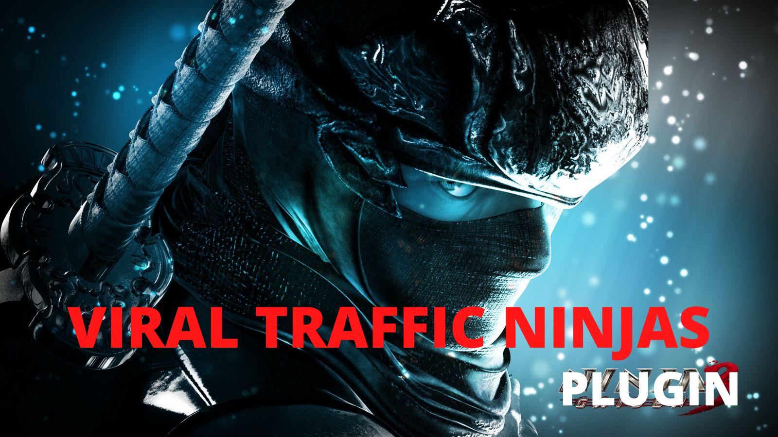WordPress PLUGIN Viral TRAFFIC Ninja