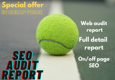 I Will create professional SEO audit report for your website