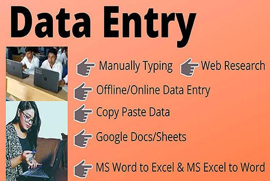 I will do any kind of data entry job